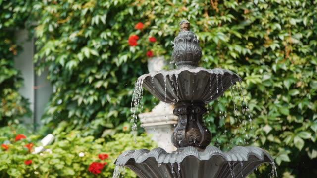 Beautiful Fountain in the Garden