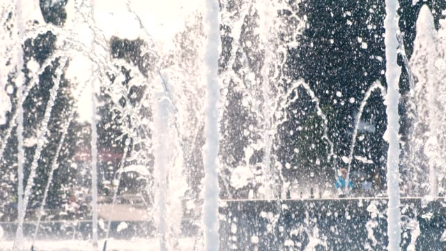 beautiful fountain jets in summer day close-up. - fontana struttura costruita dall'uomo video stock e b–roll