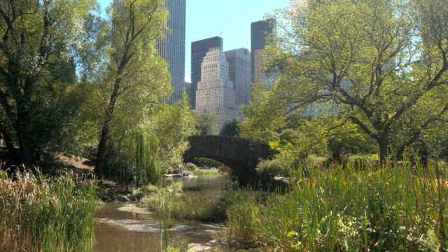 CLOSE UP: Beautiful Gapstow Bridge in sunny Central Park with NYC skyline CLOSE UP: Iconic stone Gapstow Bridge above the Pond in sunny NYC Central Park on stunning summer day. Luxury glassy skyscrapers, office buildings, corporate towers creating New York City skyline central park manhattan stock videos & royalty-free footage