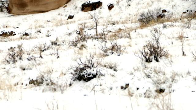 schöne geologischen formationen in kappadokien im winter - zentralanatolien stock-videos und b-roll-filmmaterial