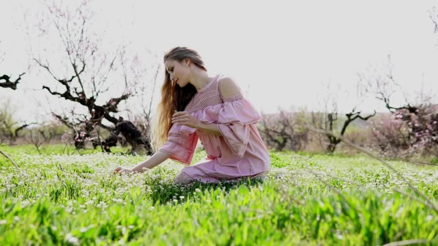 beautiful girl gathers wildflowers in the garden video