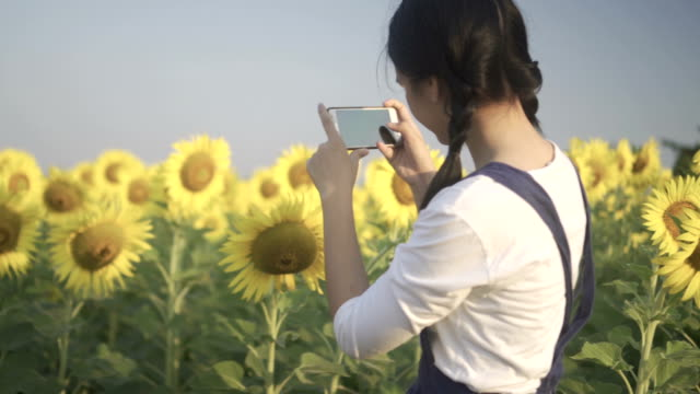 Beautiful girl happy on a sunflower field  and take photo with sunflower