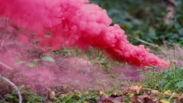 Beautiful girl in a forest walks up to a color smoke grenade on the ground and picks it up, slow motion video