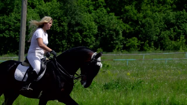 A beautiful girl in white hair and white clothes is riding a black brown stallion. The girl makes the horse perform various beautiful movements. The girl's hair develops in the wind. Sunny summer day on a green glade. video