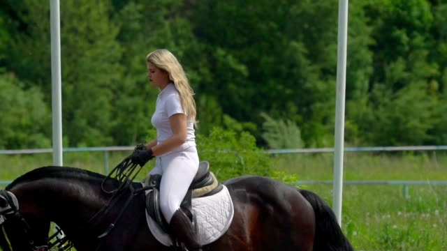 SLOW MOTION:  A beautiful girl in white hair and white clothes is riding a black brown stallion. The girl makes the horse perform various beautiful movements. The girl's hair develops in the wind. video