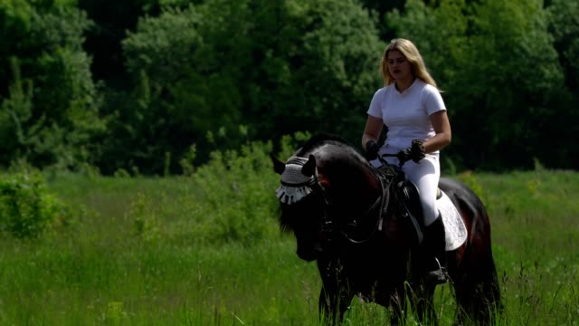 A beautiful girl in white hair and white clothes slowly rides on a black brown stallion at the racetrack. The girl warms up the horse before the performance. video