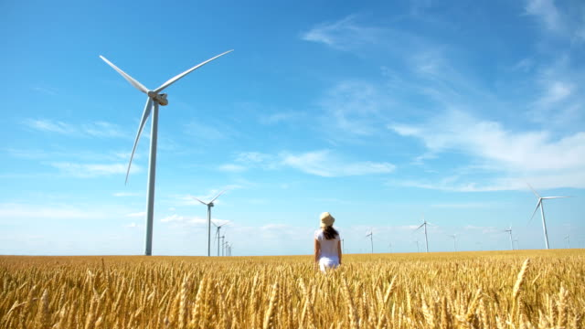 Beautiful girl on yellow field of wheat with windmills for electric power production