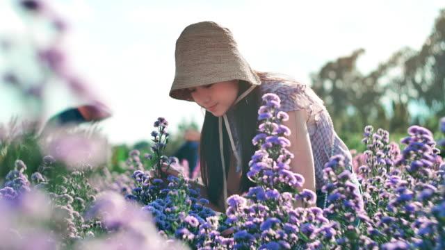 slo mo güzel kız çiçek koklama - kokulu stok videoları ve detay görüntü çekimi
