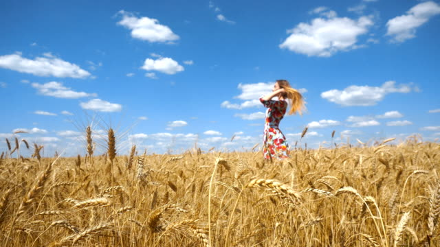 beautiful girl standing in a wheat field and straightens your hair video