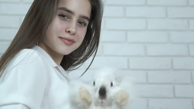 schönes mädchen mit einem weißen kaninchen. - osterhase stock-videos und b-roll-filmmaterial
