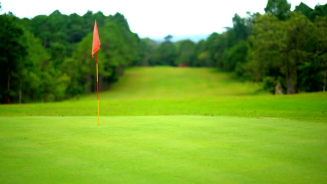 Beautiful golf course of golfer playing golf sport