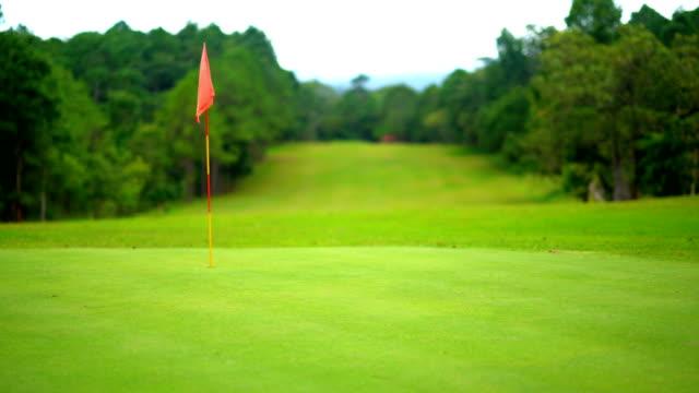 vidéos et rushes de superbe parcours de golf des golfeurs jouant golf sport - golf