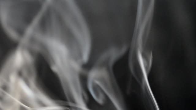 vacker grå rök - designelement bildbanksvideor och videomaterial från bakom kulisserna