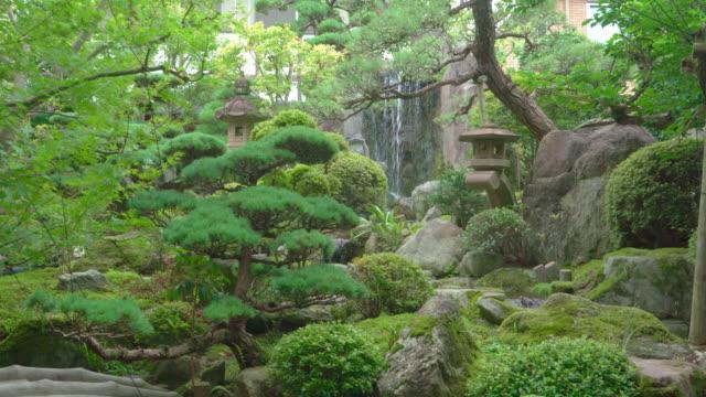 美麗的日本花園,有裝飾的樹木和錦鯉魚塘 - 池 個影片檔及 b 捲影像
