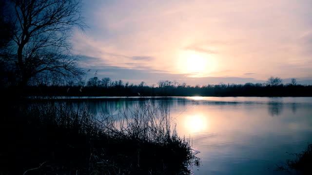 schöner see im licht der abendsonne. schuss von sonnenuntergang am fluss schwenken. - schilf stock-videos und b-roll-filmmaterial