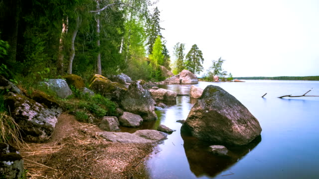 Beautiful lake in the forest. time lapse video