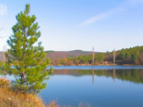 bellissimo lago nei morning_ntsc - pinacee video stock e b–roll