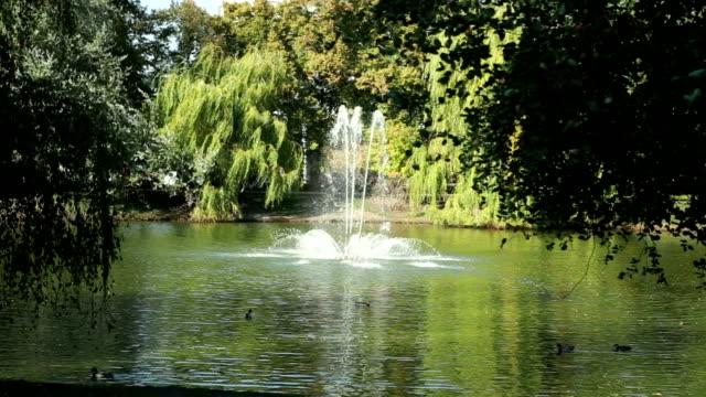 美しい湖、噴水公園 - キューケンホフ公園点の映像素材/bロール
