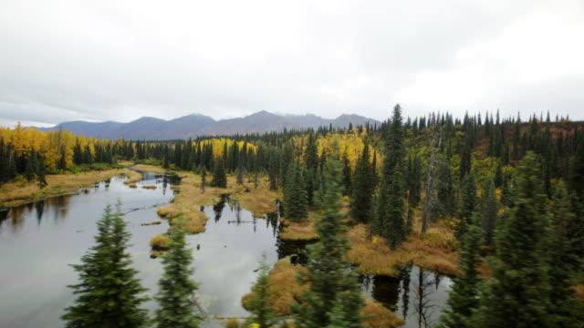 Beautiful lands at denali alaska
