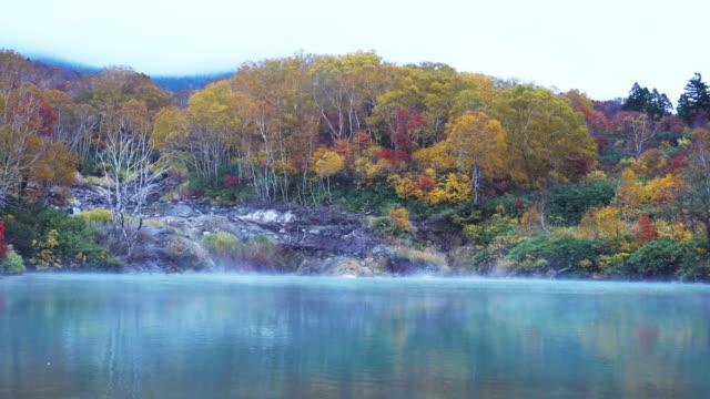 beautiful landscape aomori autumn, japan. - ноябрь стоковые видео и кадры b-roll