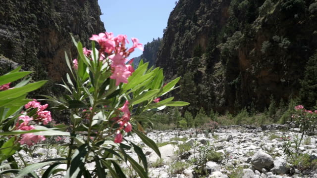 Beautiful landscape of Samaria gorge, Crete, Greece