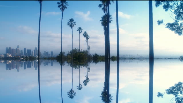 Beautiful mirrored clip of tall palm trees and Los Angeles skyline - UHD 4 K resolution video