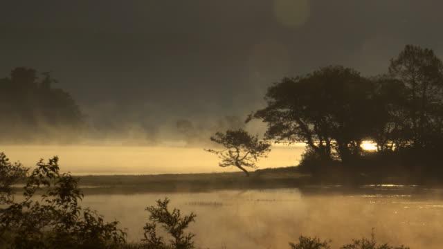 vídeos de stock e filmes b-roll de beautiful morning at lake hibara - margem do lago