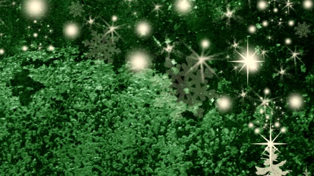 Beautiful motion Christmas Backgrounds with snowflakes and stars. video