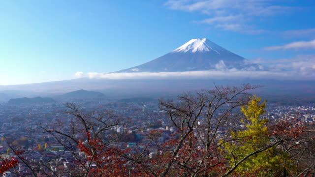 vidéos et rushes de belle montagne fuji à l'érable en saison d'automne au japon - fuji yama