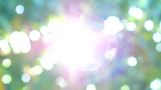 vídeos y material grabado en eventos de stock de hermoso fondo natural con sol - memorial day