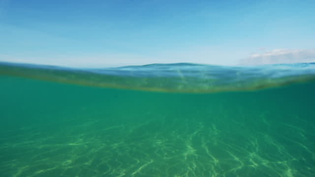 Beautiful Ocean Above and Bellow Split View video