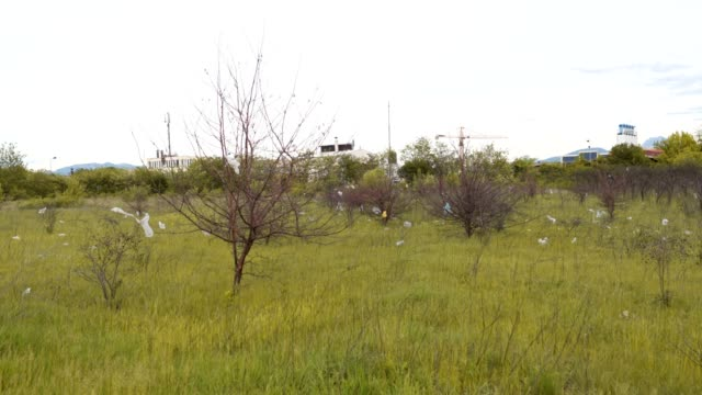 Beautiful outskirt grass area polluted
