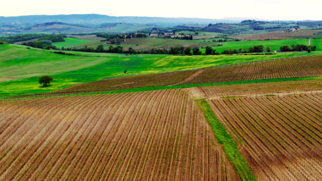 Beautiful panorama of the valley by the hill. Tuscany.
