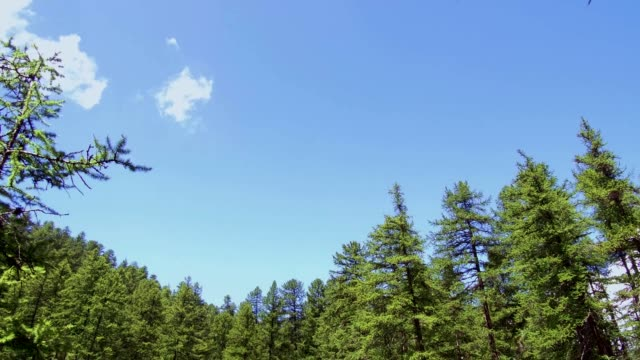 vídeos de stock e filmes b-roll de beautiful pattern of lake in french alps, vidéo 4k - altos alpes