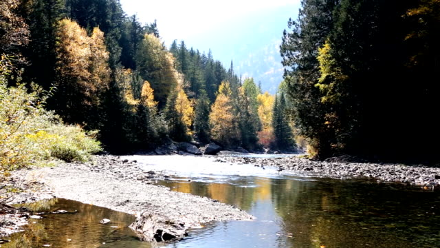 Beautiful Peaceful Mountain River with Fall Colors video