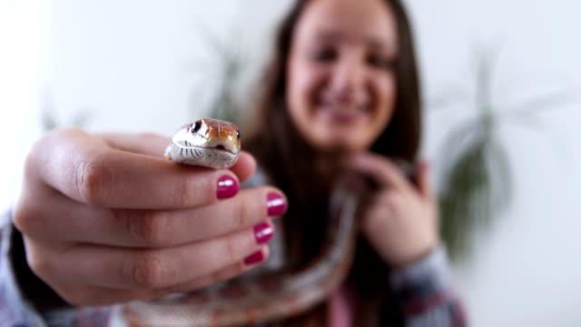 Beautiful pet snake