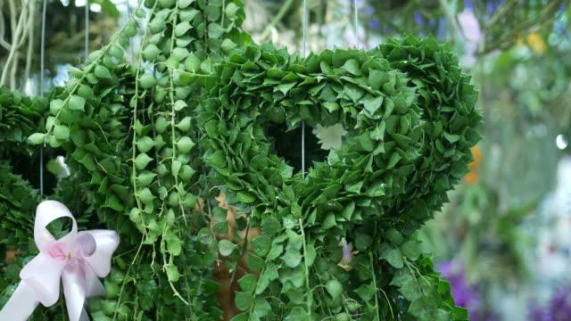 beautiful plant in heart shape video