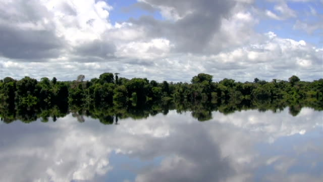 Beautiful reflection on Amazon river video
