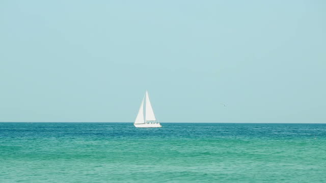 Beautiful sailboat passing by on gorgeous ocean waters video