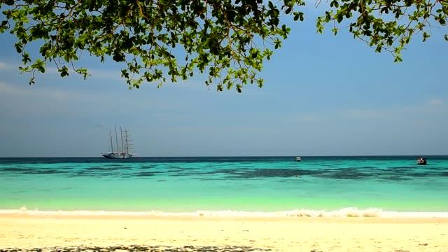 koh rok adasında güzel kum plaj, krabi - andaman denizi stok videoları ve detay görüntü çekimi
