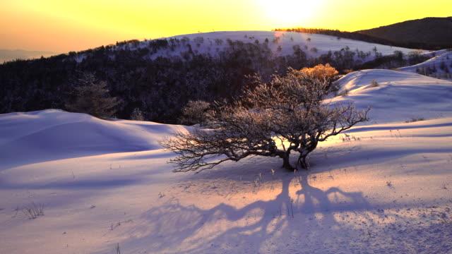 schöne landschaft von utsukushi-gahara. - hochplateau stock-videos und b-roll-filmmaterial