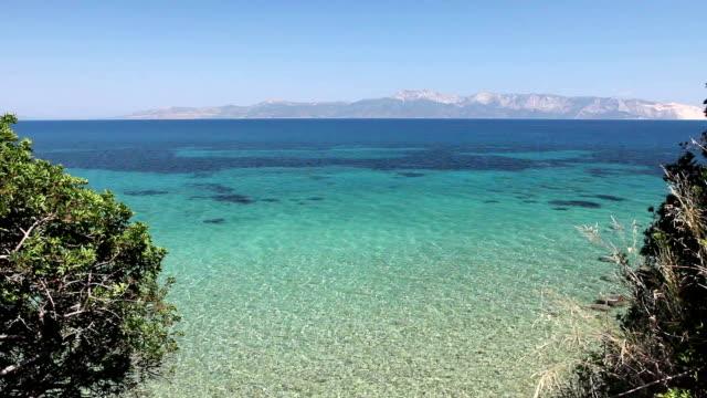 Beautiful shallow sea with vegetation around bay, pine trees video