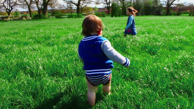 Beautiful shot of toddler walking in field meadow during spring video