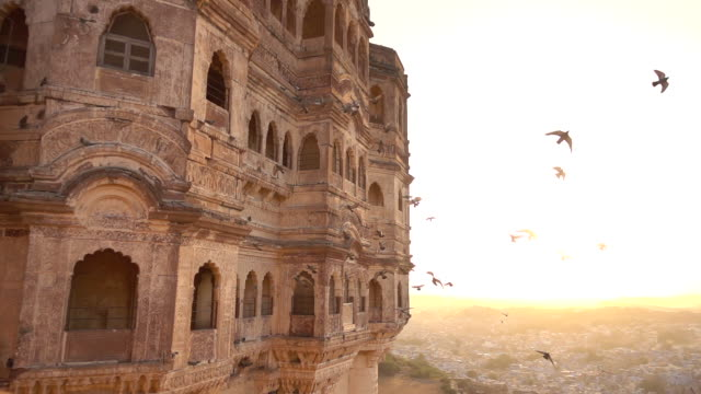 Beautiful slow motion video of some pigeons flying at sunset on the Udaipur City Palace, Rajasthan, India. Beautiful slow motion video of some pigeons flying at sunset on the Udaipur City Palace, Rajasthan, India. royalty stock videos & royalty-free footage