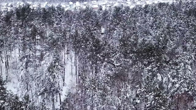 Beautiful small village winter landscape. video
