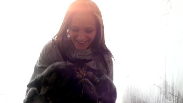 beautiful smiles brunette girl holding cute kittens - gatto dal pelo corto video stock e b–roll