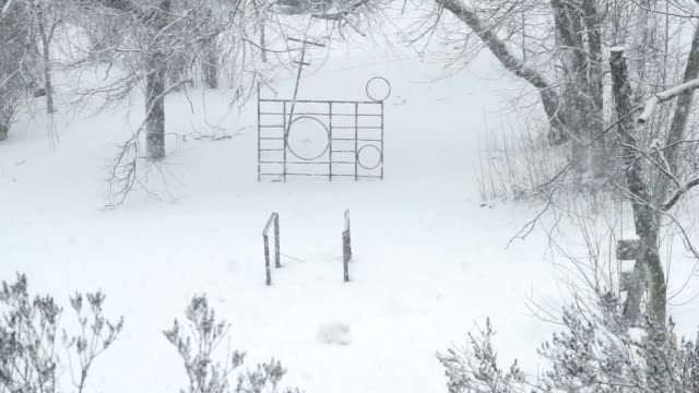 Beautiful snowfall on the background of the broken and not well-kept yard video