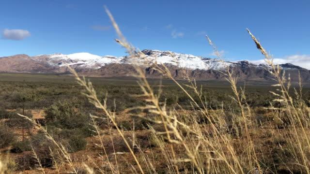 schöne snowy mountain karoo winter landschaft südafrika hintergrundfokus - afrikanische steppe dürre stock-videos und b-roll-filmmaterial