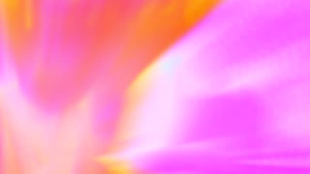 vídeos de stock, filmes e b-roll de iluminação suave de laranja e rosa linda em movimento - colorful background