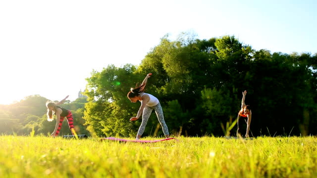 Beautiful sportswomen doing exercise with dumbbells in the park video
